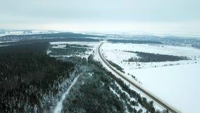 Forest Winter-Waldwinter kommt stock video