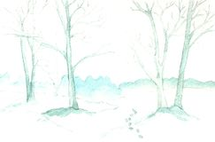 Forest in winter. Winter forest. Template for design greeting cards, banner, poster, website Royalty Free Stock Photos