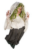 Forest witch Stock Image