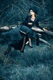 Forest Witch imagen de archivo libre de regalías