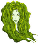 Forest witch head drawing illustration Royalty Free Stock Images