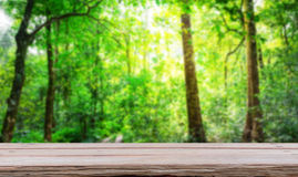 Forest with wood planks Royalty Free Stock Image