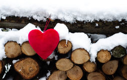 Forest Wood and Soft Pillow Heart Stock Images