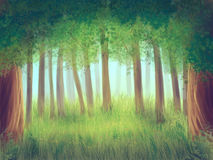 Forest. Wood from trees, grass, flowers, illustration painting Royalty Free Stock Image