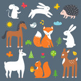 Forest and Woods Animals Vector Cartoon Illustration Stock Images