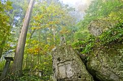 The forest in Yamadera temple. Way to the high mountain, Japan Royalty Free Stock Photography