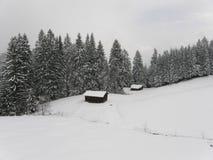 Foresta in alpi bavaresi nell'inverno Immagini Stock Libere da Diritti