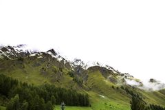 Foresta alpina dell'albero sulla montagna con le alpi più alte e catena montuosa più estesa in Samnaun Fotografia Stock