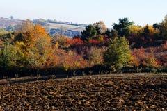 Foresta arata di autunno e del campo Fotografia Stock