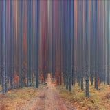 Foresta astratta di autunno immagine stock
