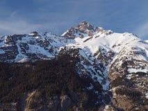 Foresta attillata dell'albero e montagna innevata dei alpes francesi della Savoia Immagini Stock Libere da Diritti