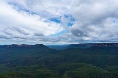 Foresta australiana dell'eucalyptus del parco nazionale blu delle montagne Fotografie Stock Libere da Diritti