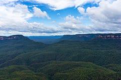 Foresta australiana dell'eucalyptus del parco nazionale blu delle montagne Fotografia Stock Libera da Diritti
