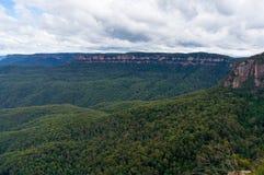 Foresta australiana dell'eucalyptus del parco nazionale blu delle montagne Immagini Stock