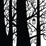 Foresta in bianco e nero Fotografia Stock