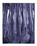 Foresta blu Fotografie Stock