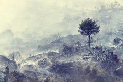 Foresta bruciata con un albero del superstite Fotografia Stock
