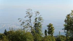 Foresta che cresce sopra la montagna contro il paesaggio urbano che si trova al suo piede, contrasto archivi video
