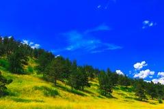 Foresta, cielo blu e catena montuosa fotografia stock libera da diritti