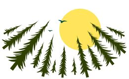 Foresta con il sole e gli uccelli Fotografia Stock Libera da Diritti