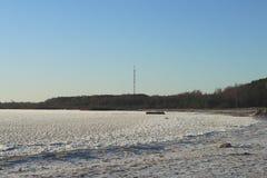 Foresta congelata della neve di inverno della torre del lago TV immagine stock