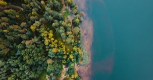 Foresta dal lago e conifere nel Nord Vista superiore del fuco aereo Abbellisca con i pini e l'abete, il giorno soleggiato dentro stock footage