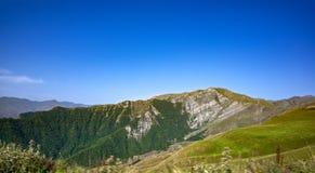 Foresta dal lato della montagna Fotografia Stock