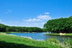 Foresta decidua e fiume blu Immagine Stock