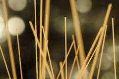Foresta degli spaghetti Fotografia Stock Libera da Diritti