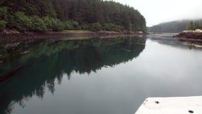 Foresta dei pini e dell'abete rosso sulla costa rocciosa del fondo dell'oceano Pacifico nell'Alaska video d archivio