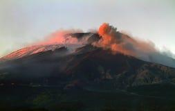 Foresta del faggio dell'Etna Fotografia Stock