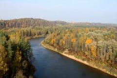 Foresta del fiume di autunno Fotografie Stock Libere da Diritti