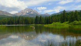 Foresta del lago e picco di montagna con la gente in kajak stock footage