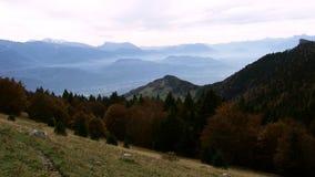 Foresta del montain del paesaggio in alpi francesi Fotografia Stock