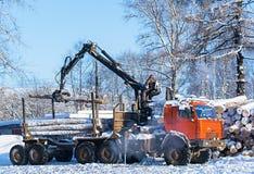 Foresta del taglio di caricamento della gru nell'orario invernale Fotografie Stock Libere da Diritti