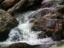 Foresta dell'acqua del parco naturale della cascata immagine stock libera da diritti