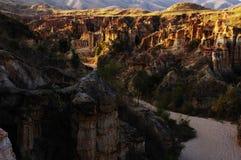 Foresta dell'argilla Immagini Stock