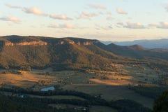 Foresta dell'eucalyptus del parco nazionale blu delle montagne Immagini Stock