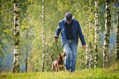 Foresta dell'uomo del cane Immagini Stock