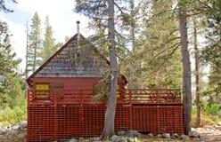 foresta della cabina di legno fotografie stock libere da diritti