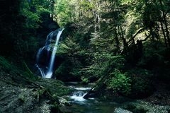Foresta della giungla di paradiso con la bella cascata in ubriacone verde del parco di Erawan in Kanchanaburi, Tailandia Stagno v Immagini Stock Libere da Diritti