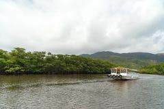 Foresta della mangrovia del fiume di Nakama Fotografia Stock
