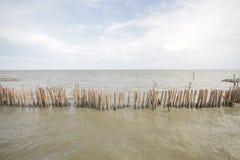Foresta della mangrovia e cielo nuvoloso, mare dell'oceano con il bastone di bambù dell'albero fatto a mano continuo della barrie fotografia stock