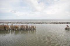 Foresta della mangrovia e cielo nuvoloso, mare dell'oceano con il bastone di bambù dell'albero fatto a mano continuo della barrie fotografie stock