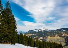 Foresta della montagna in Baviera Fotografia Stock Libera da Diritti