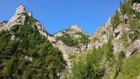 Foresta della montagna e scogliere rocciose Fotografia Stock Libera da Diritti
