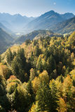Foresta della montagna nella caduta con le montagne Immagini Stock Libere da Diritti