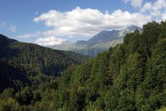 Foresta della montagna della riserva naturale caucasica di biosfera immagini stock