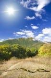 Foresta della montagna sotto cielo blu. Immagini Stock Libere da Diritti