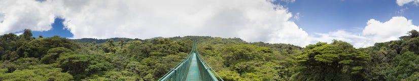 Foresta della nuvola nel Costa Rica Fotografia Stock Libera da Diritti